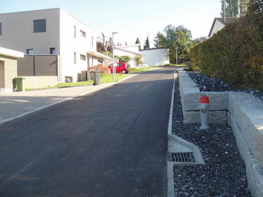 Abschnitt Haslibergstrasse nach SBB-Überführung