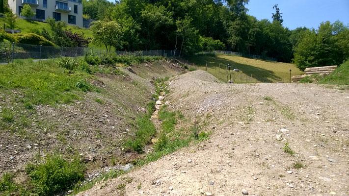 Hochwassersicherer und revitalisierter Abschnitt
