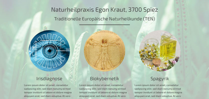 Beispiel-Webseite Naturheilpraxis_TEN 1