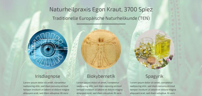 Moderne Internetseiten - Naturheilpraxis_TEN 1