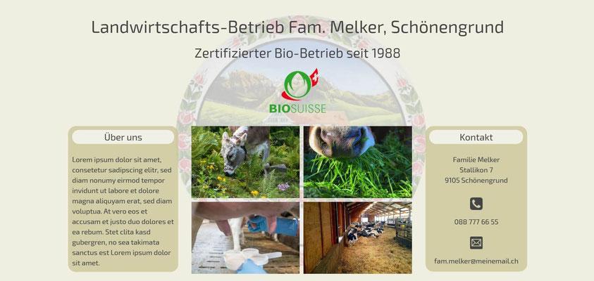 Moderne Internetseiten - Landwirtschaft_Bio-Hof