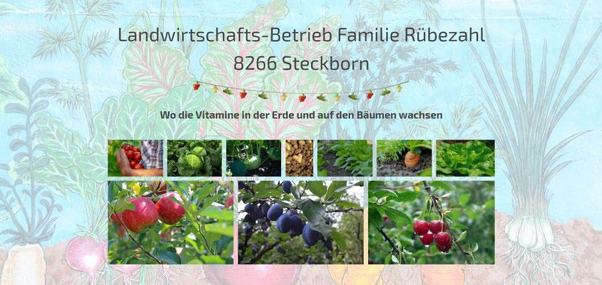 Moderne Internetseiten - Landwirtschaft_Gemüsebau-Obstbau