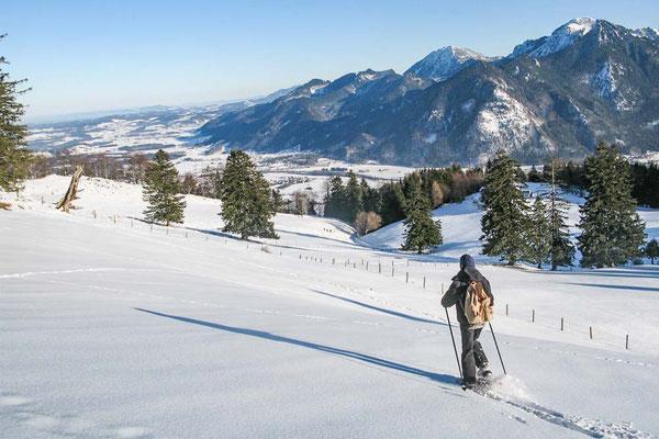 schneschuhtour-winter-chiemgau