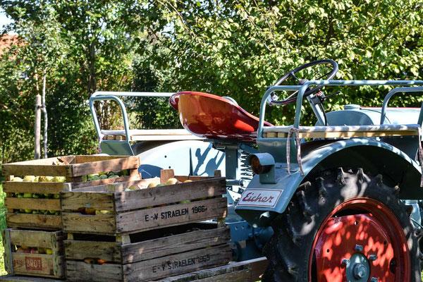 ferienwohnung-chiemsee-eicher-traktor