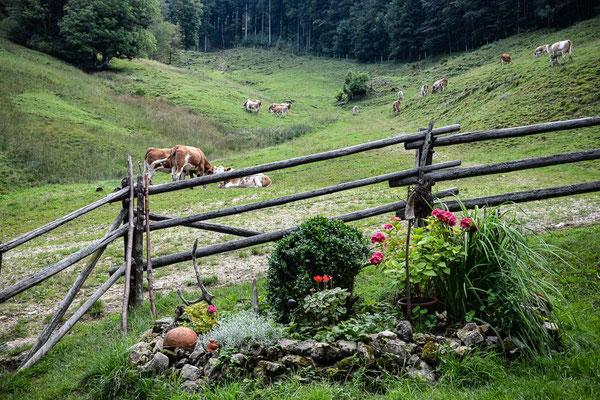 ferienwohnung-chiemsee-chiemgauer-alpen-4