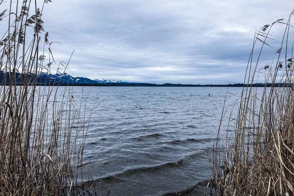 ferienwohnung-chiemsee-winterschwimmen-7