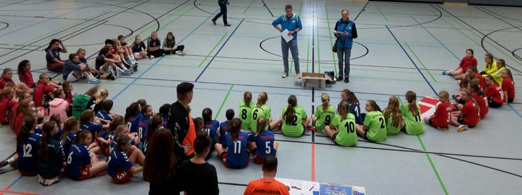 MOIN Wesermarsch Handball weibliche D Jugend