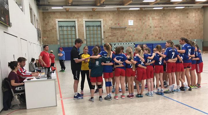 MOIN Wesermarsch Handball 2017