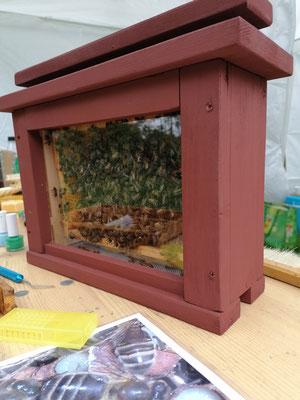 """Stand """"La boite à outils"""" ou vous pouviez vous exercer à retrouver la reine parmis ses ouvrières, apprendre à identifier les outils principaux utiles à l'apiculteur"""