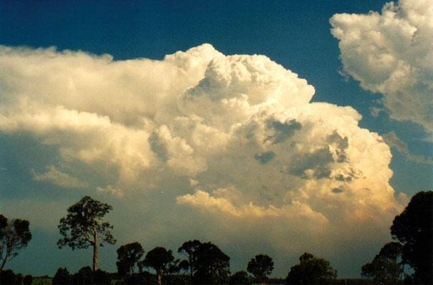 Pyrocumulonimbus causada por incêndio florestal vista em New South Wales, Austrália, em 22/12/2001. Foto de Michael Bath.
