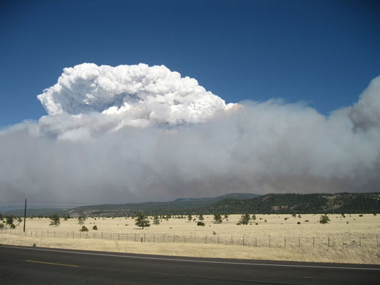 Pyrocumulonimbus causada por incêndio florestal.