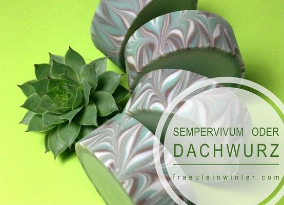 Aus der Natur - Seife mit Dachwurz (Sempervivum)