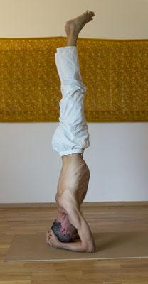 La posture sur la tête (Sirshasana)