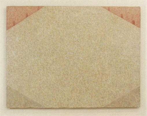 中間領域 / Gray  Area  91.3×120.8m  oil on wood