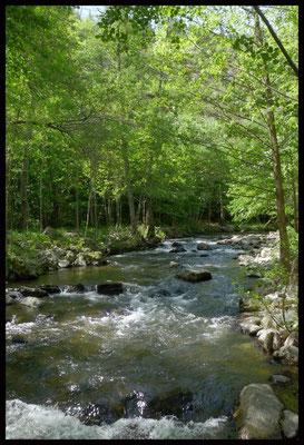 la riviere de la masse a 400 m du gîte