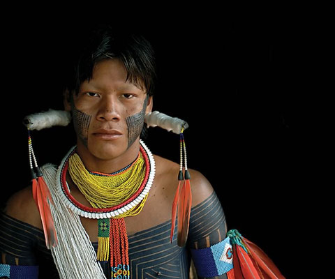 ANTONIO BRICEÑO: Arará I. Macaw. Kayapo culture, Brazil. 2006