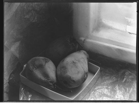 Zwei Birnen, 1985