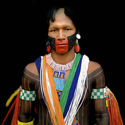 ANTONIO BRICEÑO: Arará III. Macaw. Kayapo culture, Brazil. 2006