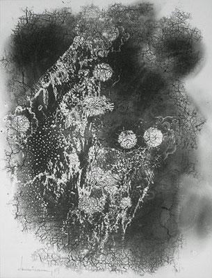 HEINZ HAJEK-HALKE. Blumen für Andrea, 1969. Silbergelatine-Barytpapierabzug. 60 x 45,5 cm. Ed. 1/4