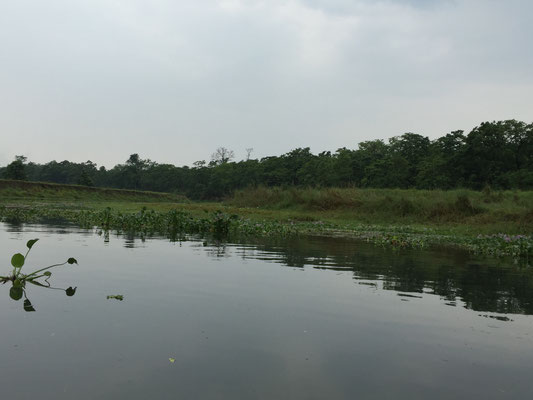 Der Fluss ist ruhig, die Strömung jedoch relativ stark.
