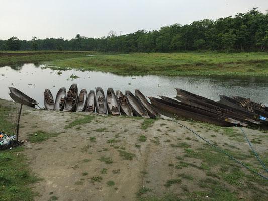 Jedes Kanu wurde aus einem einzelnen Baumstamm angefertigt. Der Bootsführer stakt mit Leichtigkeit durch das seichte Wasser; wir machen große Augen, wie tief das Kanu sitzt und wie dicht wir den Tieren kommen.