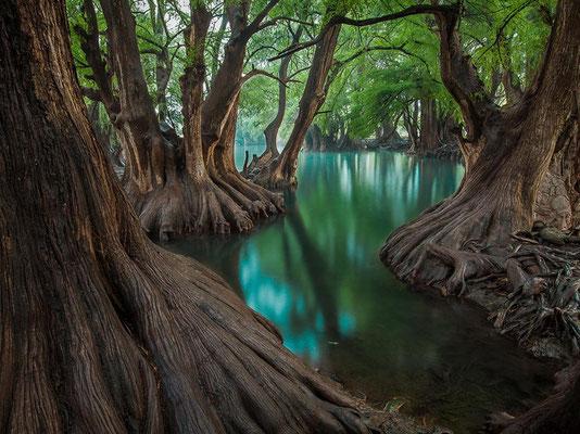 Parc national Lago de Camécuaro - MEXIQUE