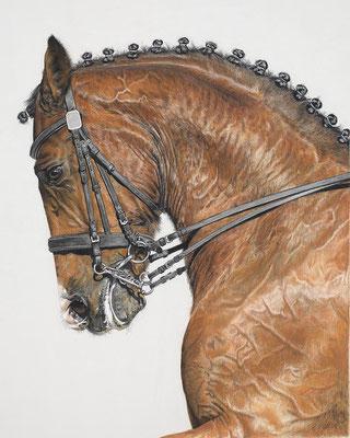 """""""The Red Horse"""" est une peinture de Terry Kirkland Cook - USA"""