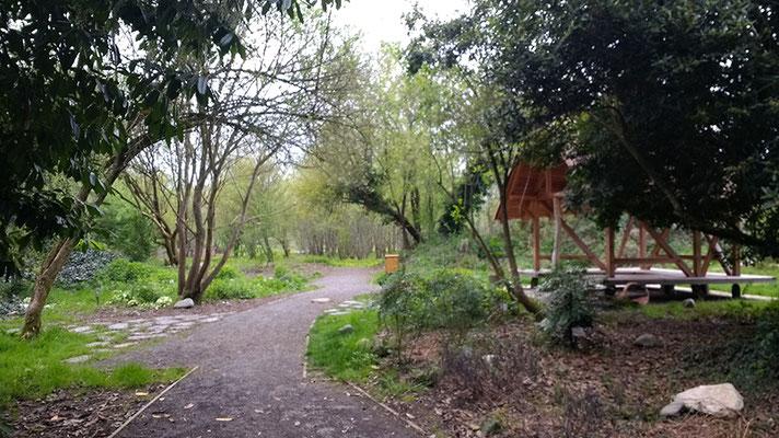 Visite de site - habitat participatif - Jardins du Laü