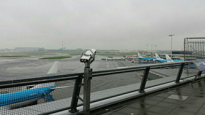 Amsterdam bei Regen und 5 Grad.
