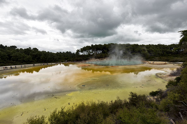 Wai - O - Tapu Thermal Wonderland