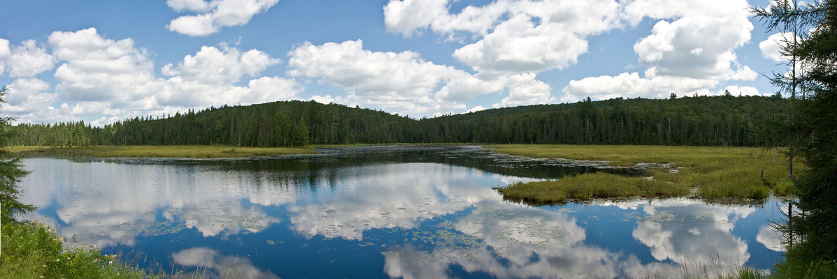 Algonquin National Park - Kanada
