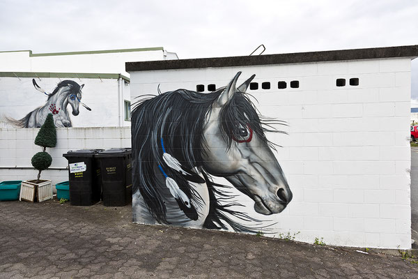 Taupo / New Zeeland