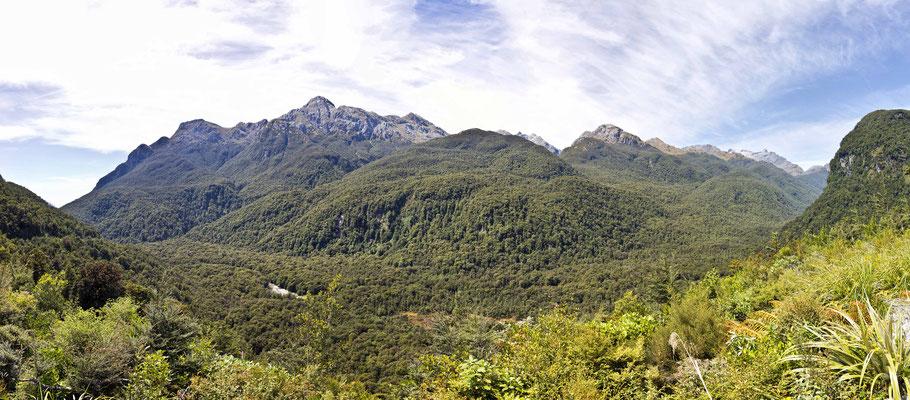Blick in die Berge - Neuseeland / Südinsel