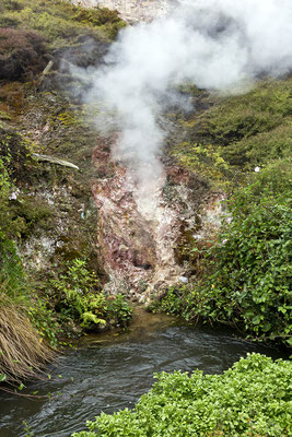 Wairakai Natural Thermal Valley