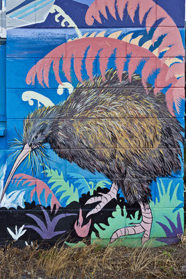 Te Anau / New Zeeland