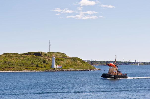 Das Maskotchen von Halifax