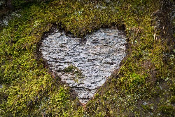 Liebe in Natura