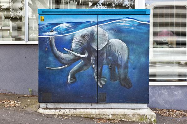Aukland / New Zeeland
