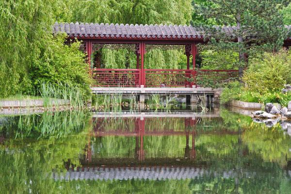 Die Gärten der Welt ... Japan