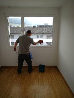 Wohnungsreinigung