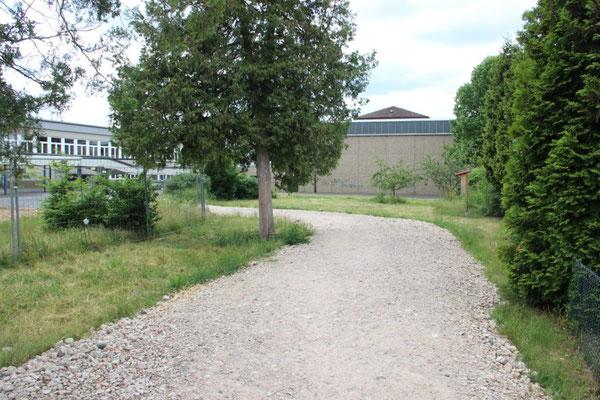 Aktuell wird ein großer Teil der Grünfläche als Baustraße (grober Schotter auf dem selbst Erwachsene gelegentlich stürzen) und als Hauptzugang zum Schulgelände genutzt. Der Rückbau des Schotterweges wird durch die zuständige Behörde veranlasst, ein genaue