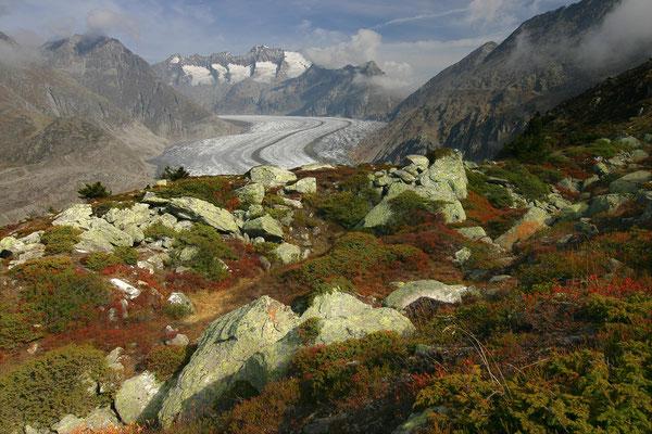 Aletschgletscher, 09.10.2007