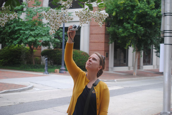 Hannah takes photos of crepe myrtle blossoms