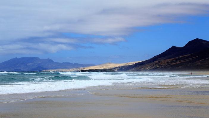 Beach Strand Landscape