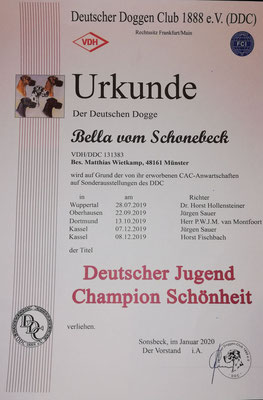 Bella ist Deutscher Jugend-Champion VDH