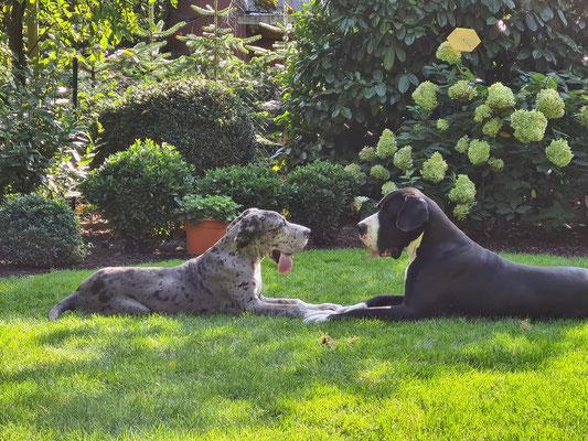 Arina und Cooper