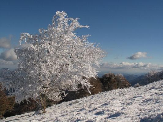 Au dessus du Col des Palomières en hiver
