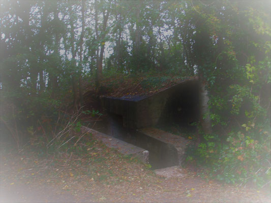 Bunker of mont Canisy