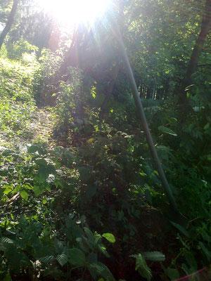 die letzen Sonnenstrahelen am Maulwurfgrab - gli ultimi raggi di sole allla tomba della talpa - the last sun ray on the mole tomp