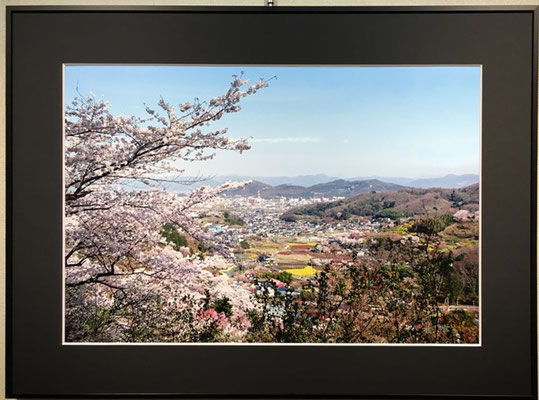 さくらⅡ(写真)内山泰